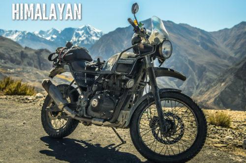 Himalayan3
